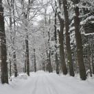 Wintersportgebiet Sächsische Schweiz
