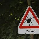 Vorsicht Zecken!