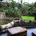Das Tapir-Gehege vom Boot aus
