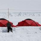 150 Zelte wollen aufgebaut werden