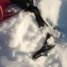 Eisschrauben als Ersatz-Hering im Eis