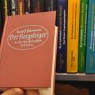 Der Bergsteiger in der Sächsischen Schweiz: Reprint 2002