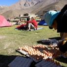 Bild 12: Dolpo/Nepal: Eierzählen, 4200 Meter über dem Meer von Ingo
