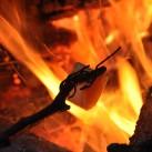 Bild 9: lecker Käse an 'Opas Grillspieß' beim Winterboofen in der Sächsischen Schweiz von Simone