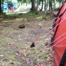 Perfekt abgespannt steht das Zelt auch beim kräftigsten Gewitter