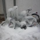 Bild 3: Eiskreationen im Hinterhof von Dorothee