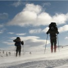 Bild 6: Kalter Wind in Lappland Tobias Bartolomaeus