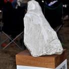 Filmpreis fürs Bergfilmfestival 2012