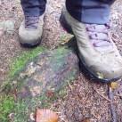 einzig problematischer Untergrund: nasse, bemosste Steine