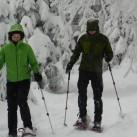Durch den tief verschneiten Winterwald: mit Schneetellern an den Trail Trekking Poles ein Vergnügen!