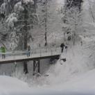 Mit Schneeschuhen durch den Thüringer Wald