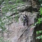 2008 an der Zyklopenmauer