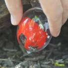 Nach diesem Ei solltet ihr Ausschau halten