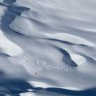 Im Jubiläumsjahr: Tiefblick aus der Südwestwand auf das 2. Höhenlager - sie hatten den Alpamayo ganz für sich allein