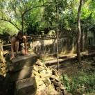 Anne balanciert über die Reste des Tempels 50 km Nord-Östlich von Siem Reap.