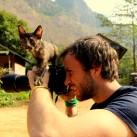 Die Katzenbabys im Kletter-Camp inspizieren Jon`s Kamera.