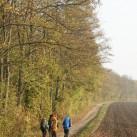 Herbststimmung an der Ostseeküste