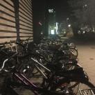 Fast wie beim Flohmarkt - die Fahrradgalerie vor dem tapir.