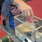Der neue kleine Wasserfilter von MSR: für den Industry Award nominiert