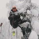 Baumbesteigen 2013 - Nicht ausgelastet im Schnee