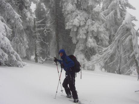 Gehilfe für den harten Gebrauch: Trekkingstock Black Diamond Trail Ergo Cork