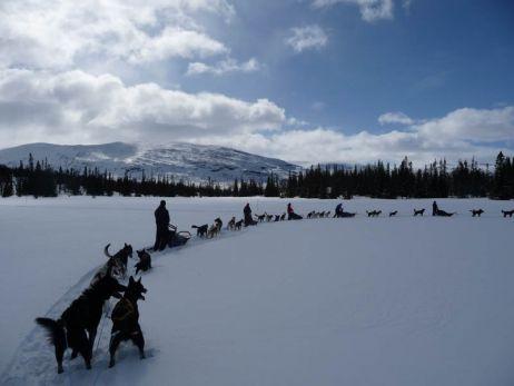 Wärmendes für Hände und Füße für Hundeschlittentouren im hohen Norden