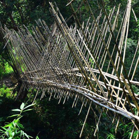 Meine Abenteuer auf Borneo