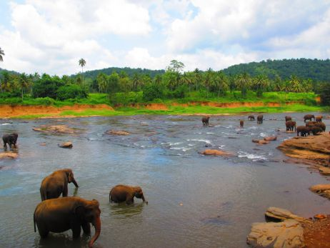Vier Wochen Backpacking in Sri Lanka