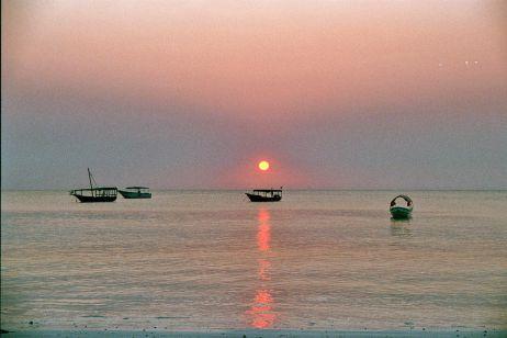 Meine Zeit auf Sansibar