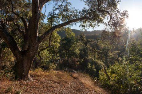USA: Kaliforniens Küste – Von San Francisco nach Los Angeles mit dem Rad