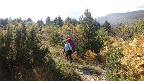 """Kurztrip Mazedonien: Wandern im Pelister Nationalpark zum """"Baba Mountain"""""""