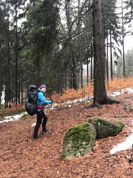 Wald und Restschnee und eine schöne Wanderzeit