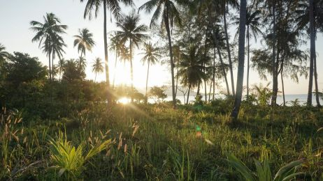Paradiesstrand im Norden von Koh Rong