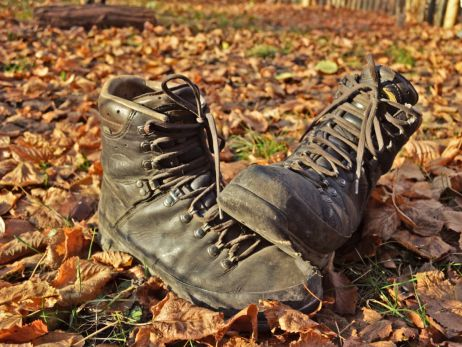 Nikolaus-Alarm im tapir: Wir putzen eure Schuhe!