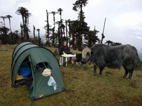 tapir Interview: Faszination Grenzräume – Simone erzählt von Wintertouren, Bergbesteigungen und sozialem Engagement