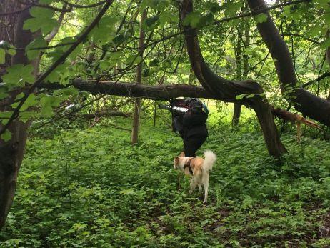 Mit dem Trailblazer 44 im Wald