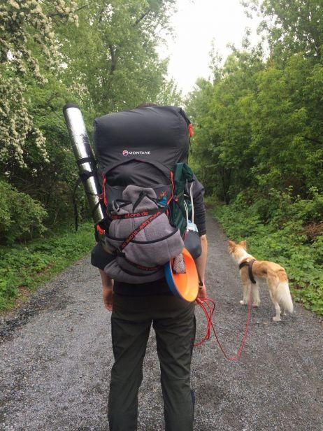 Hund. Trailblazer. Natur. Passt.