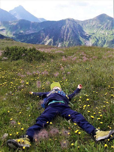 Ausruhen auf der Bergkräuterwiese