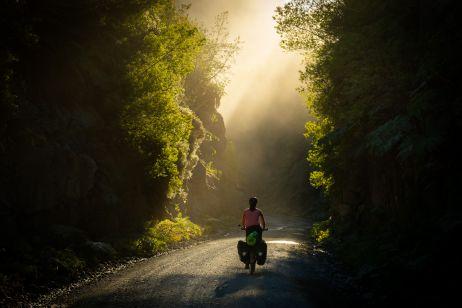 Durch die dampfenden Regenwälder