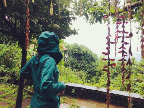 testambiente zur monsunzeit
