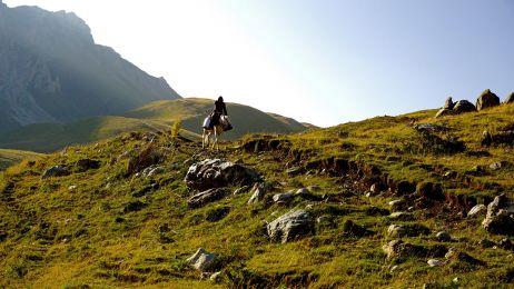 Ein Schäfer kehrt zurück ins Tal, nachdem er seine Tiere besucht hat