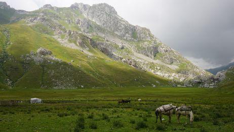 Die Pferde der Schäfer grasen auf der Panair-Ebene