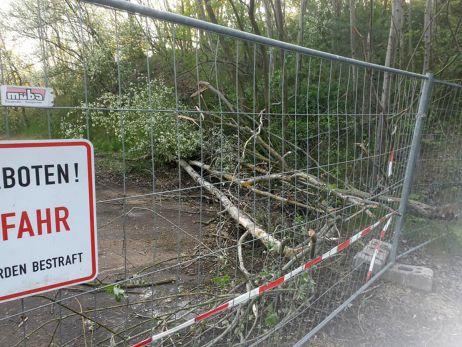 Rettet den Holzberg: Schmaler Hoffnungsstreif am Horizont? Kurzes Update zur aktuellen Lage