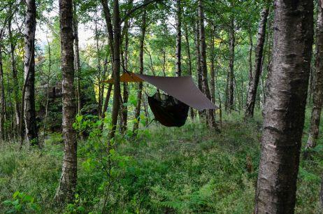 Zweite Nacht – Am Hang über Farn und Gras