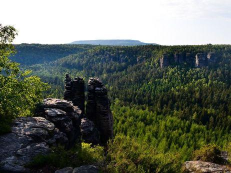 Testszenario: Auf dem Forststeig / Sächsische Schweiz