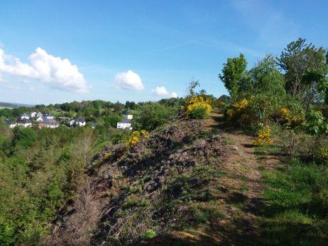180 km Grünes Band: Auf dem Pilgerweg der Freiheit