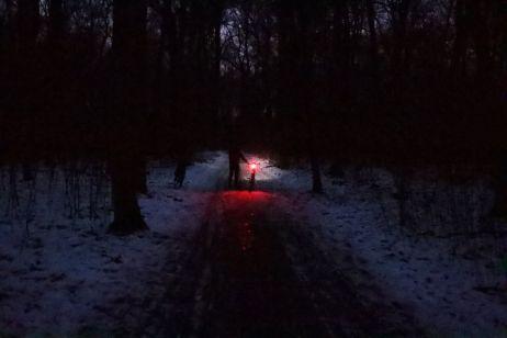 Unterwegs im Leipziger Wald mit der Sigma AURA 80
